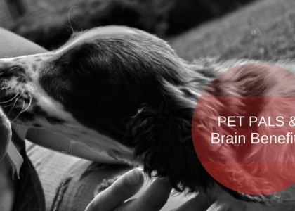 Mental Benefits of Pets