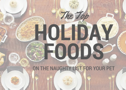 Naughty List Foods for Pets