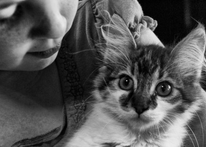 Important Tips for Kid and Cat Safety